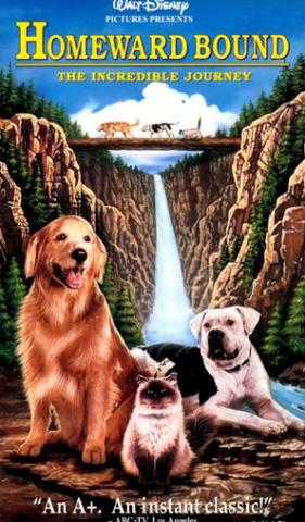 "Cover image for movie ""Homeward Bound"""